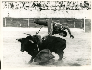 Torero Being Tossed by Bull