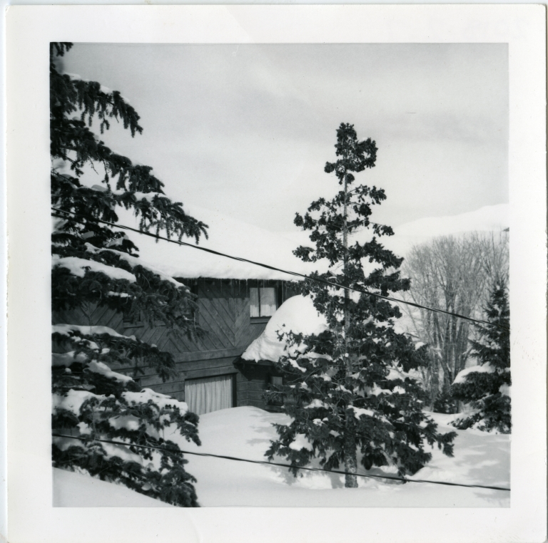 Hemingway House in Winter Through Pines