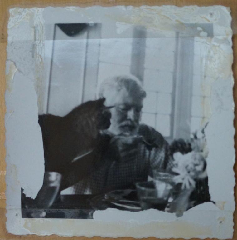 Hemingway and Cat